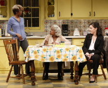 DOT  – Vineyard Theatre